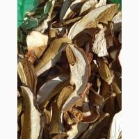 Сухие грибы из Закарпатя 2020 белые 1 сорт цены указаны за 1 кг