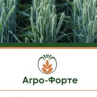 Озима Пшениця АХІМ (І Репродукція)