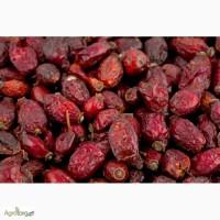 Продам шиповник, боярышник сухофрукты урожай 2017
