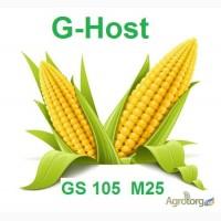Кукуруза Ghost (Джихост) - залог высоко урожая