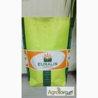 Семена подсолнечника ЕС Белла (Euralis Semences) США