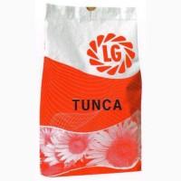 Продам семена подсолнечника Тунка (Лимагрейн)