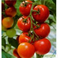 Пентафаг- уникальный биопрепарат против вирусных заболеваний растений