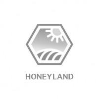 Покупаем мед постоянно