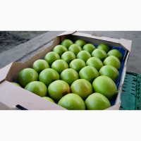 Яблоки Granny Smith 1 и 2 сорт