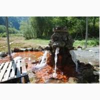 Природная минеральная вода Карпат доставка и забор