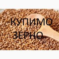 Підприємство на постійній основі закуповує пшеницю: 2 клас, 3кл і фураж