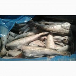 Продам рыбу замороженую