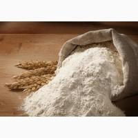 Продам борошно, висівки пшениці