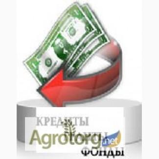 Кредиты и инвестиции в бизнес