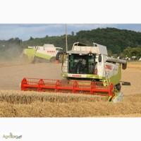 Уборка урожая зерновых комбайном Черкассы, аренда комбайнов, услуги уборки зерна