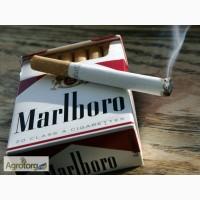 Продам нарезаный табак для самокруток и гильз сорт Вирджиния American Blend