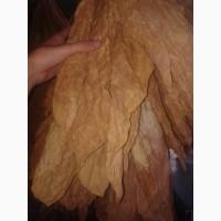 Продам лист табака природньої ферментації