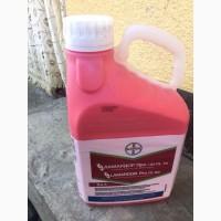 Ламардор Про - фунгіцидний протруйник для зернових