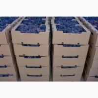 Продам столовый виноград -киш миш Юпитер