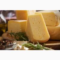 Куплю сырный продукт опт