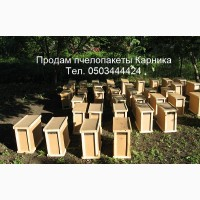 Пчелопакеты КАРНИКА. 4 рамки 3+1