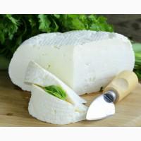 Продаж натуральних сирів