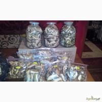 Продаються білі, сушені гриби з Закарпаття
