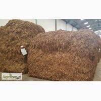 Табак Листовой Оптом от 20 тонн из Индонезии – Jatim VO – ферментированный, Индонезия