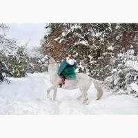 Орловская рысистая лошадь кобыла