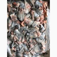 Продам рыбные отходы красной рыбы - ассорти