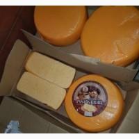 Купим сыр и сырный продукт, опт