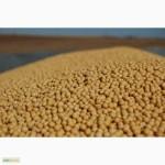 Продаем семена посевной сои сорта Apollo, устойчивого к гербициду