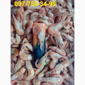 Черноморская креветка микс