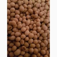 Семена сои ABEE Канадский трансгенный сорт (элита)