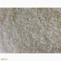 Закупаем рисовую крупу