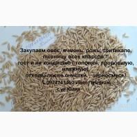Закупаем постоянно проблемное зерно