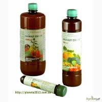 БайкалЭМ1У-универсальный биостимулятор и фунгицид растений