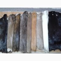 Выделка и покраска натурального меха. Продам шкуры нутрии выделанные и крашеные