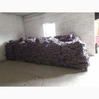 Продам товарный картофель со склада в Кропивницком