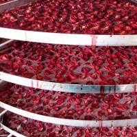 Промышленная сушка ягод, фруктов, овощей