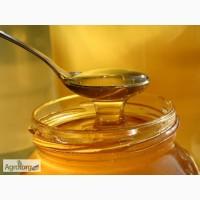 Продам качественный мед