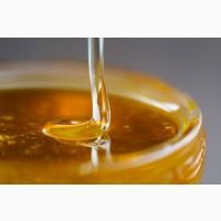 Куплю Мёд Оптом с Антибиотиком