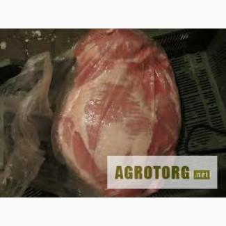 Куплю окорок свинной!