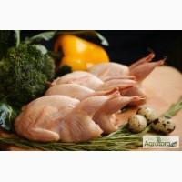 Тушки BIO перепелиные, фазана и курицы свежие