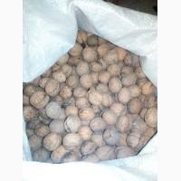 Купуємо грецькі горіхи