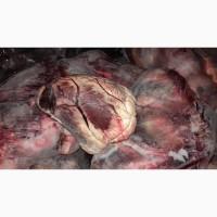 Продам серце говяжье