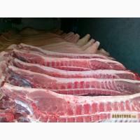Продам мясо Свинина и Говядина Полутуши, Блочка, Разделка. хорошая цена и качество, киев