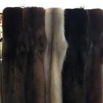 Мех. Шкуры чернобурки, песца, норки