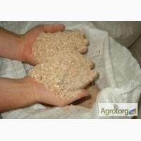 Отруби пшеничные кормовые от производителя