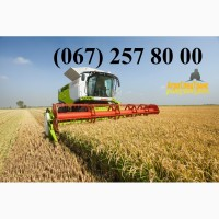 Аренда спецтехники для уборки зерновых и масличных культур