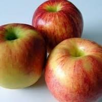 Продадим яблоки с собственного сада Джонатан, Джонагоред, Джонаголд