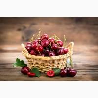 Продам черешню (ягода) оптом з власних садів у Миколаївській області