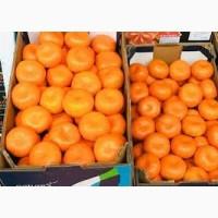 Продам мандарин сладкий вкусный без косточек