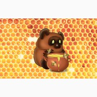 Купим мед, который Вы, не можете продать